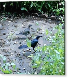 Acrylic Print featuring the photograph Two Birds by Felipe Adan Lerma