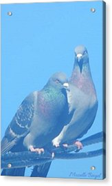 Two Birds In Spring Acrylic Print