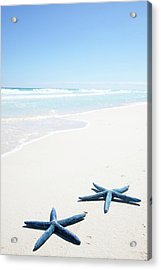 Two Blue Starfish On Tropical Beach Acrylic Print