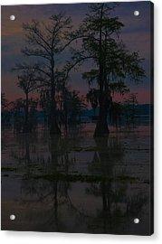Two Cypress At Dawn Acrylic Print by Kimo Fernandez