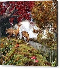 Two Deers Acrylic Print
