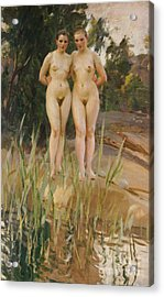 Two Friends  Acrylic Print by Anders Leonard Zorn