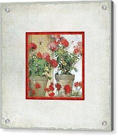 Two Geranium Pots Acrylic Print