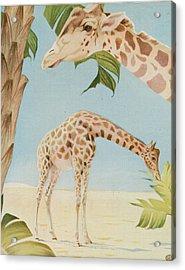 Two Giraffes Acrylic Print by Art Museum