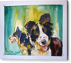 Acrylic Print featuring the painting Two Good Cowdogs by P Maure Bausch