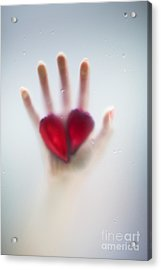 Two Hearts Acrylic Print