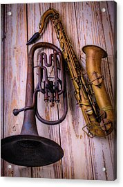 Two Horns Acrylic Print by Garry Gay