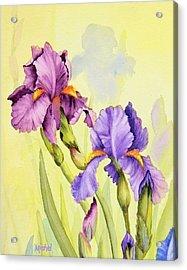 Two Irises  Acrylic Print