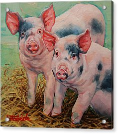 Two Little Pigs  Acrylic Print