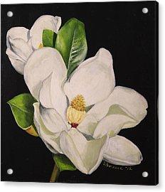 Two Magnolias Acrylic Print