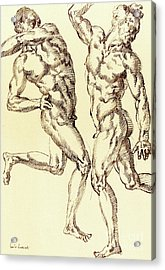 Two Male Nude Studies Acrylic Print