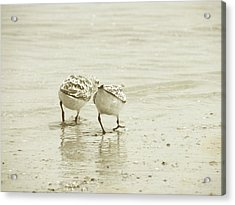 Two Of A Kind Acrylic Print by JAMART Photography