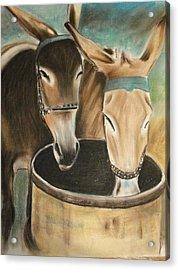 Two Of A Kind Acrylic Print by Scott Easom