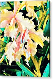 Two Orchids Pink Turquoise Acrylic Print