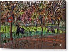 Two Ponies Acrylic Print