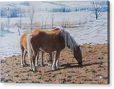 Two Ponies In The Snow Acrylic Print