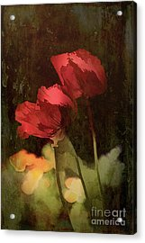 Two Poppies Acrylic Print by Elaine Teague