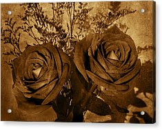 Two Roses Acrylic Print by Kathleen Stephens