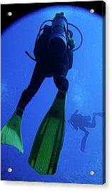 Two Scuba Divers Swimming Acrylic Print by Sami Sarkis