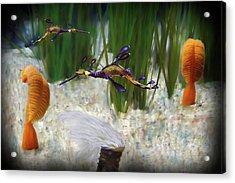 Two Sea Horses Acrylic Print