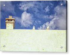 Two Seagulls On A Wall Acrylic Print