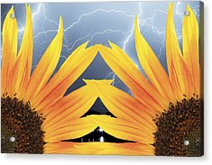 Two Sunflower Lightning Storm Acrylic Print by James BO  Insogna