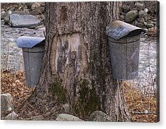 Two Syrup Buckets Acrylic Print