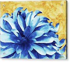 Two Tone Acrylic Print by Ken Powers
