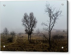 Two Trees In The Fog Acrylic Print