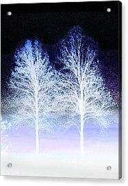 Two Trees In Winter Acrylic Print