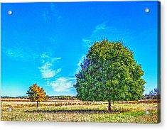 Two Trees On The Illinois Prairie Acrylic Print