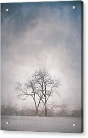 Two Trees Acrylic Print by Scott Norris