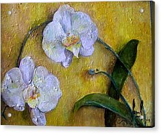 Two White Orchids Acrylic Print by Carol P Kingsley