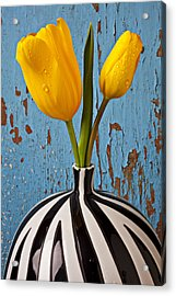 Two Yellow Tulips Acrylic Print