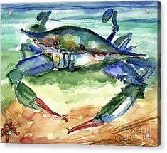 Tybee Blue Crab Acrylic Print by Doris Blessington