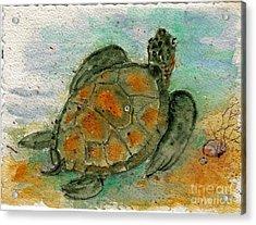 Tybee Sea Turtle Acrylic Print by Doris Blessington
