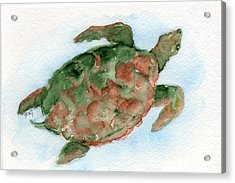 Acrylic Print featuring the painting Tybee Turtle by Doris Blessington
