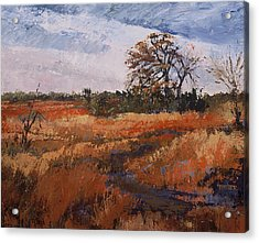 Typical Texas Field Acrylic Print by Jimmie Trotter