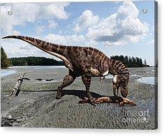 Tyrannosaurus Enjoying Seafood Acrylic Print