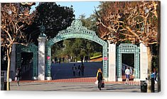 Uc Berkeley . Sproul Plaza . Sather Gate . Wide Size . 7d10020 Acrylic Print by Wingsdomain Art and Photography