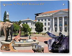 Uc Berkeley Welcomes You To The Zoo Please Do Not Feed The Animals With Text Acrylic Print by Wingsdomain Art and Photography