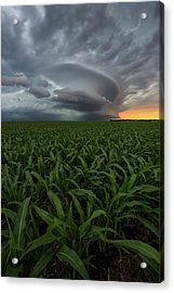 Acrylic Print featuring the photograph UFO by Aaron J Groen