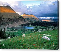 Uinta Wilderness Acrylic Print by Leland D Howard