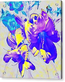 Acrylic Print featuring the photograph Ultraviolet Daylilies by Shawna Rowe
