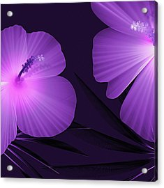 Ultraviolet Hibiscus Tropical Nature Print  Acrylic Print