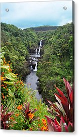Umauma Falls Hawaii Acrylic Print
