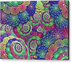 Umbrellas And Shells Acrylic Print