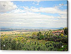 Umbrian View Acrylic Print by Dorothy Berry-Lound