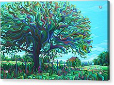Umbroaken Stillness Acrylic Print