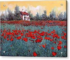 Un Campo Di Papaveri Acrylic Print
